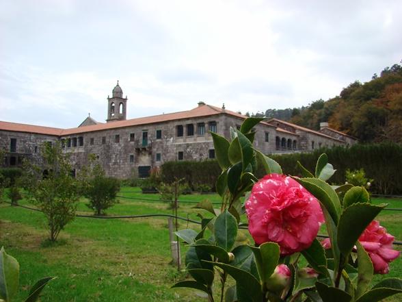 Monasterio y camelia