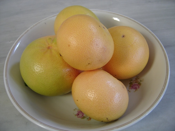 Frutos del ES